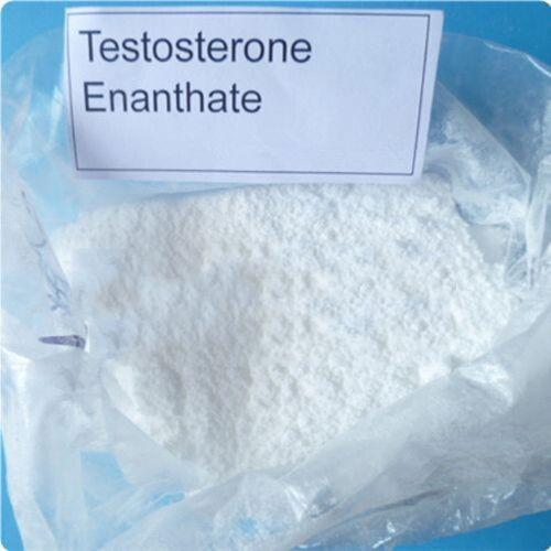 buy Testosterone Enanthate Powder